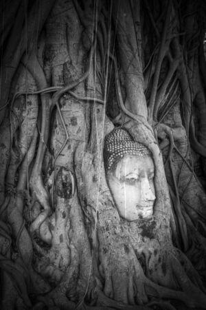 Buddha Head in Tree Roots, Wat Phra Mahathat temple, Ayutthaya, Thailand