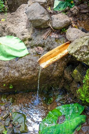 Natural bamboo fountain in Santo Antao, Cape Verde, Africa Banque d'images - 142947468