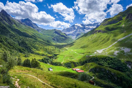 Mountain and pastures landscape in Pralognan la Vanoise. French alps Archivio Fotografico