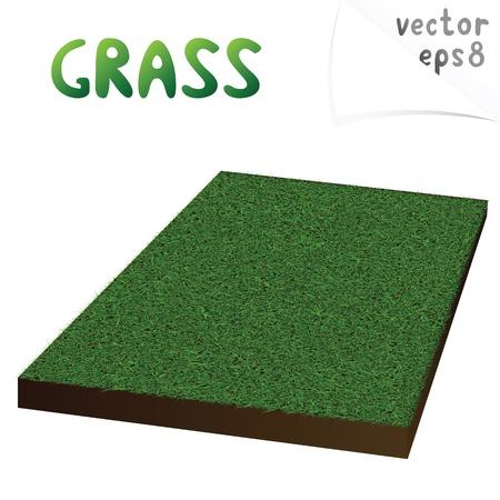 segment: Vector illustration of green isometric lawn segment