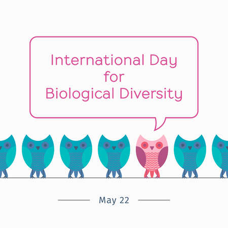 International Day for Biological Diversity greetings card or banner with cartoon owls illustration.  イラスト・ベクター素材