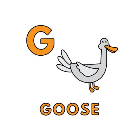 Vector Cute Cartoon Animals Alphabet. Goose Illustration