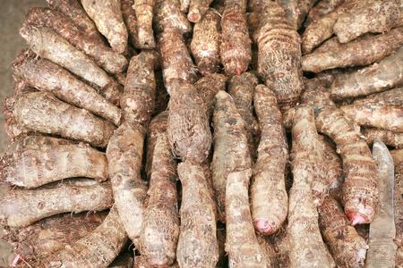 taro: background of fresh taro root (colocasia)