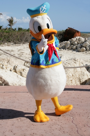 ORLANDO, FL- FEB 5:  Donald duck dressed as a captain walking around on the beach of Cape Canaveral in Orlando, Florida on Feb 5 2013.