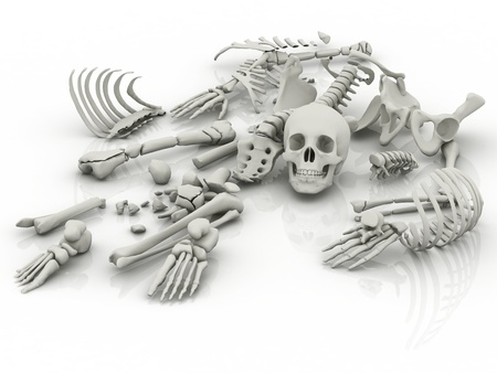 Skeleton parts on the floor photo
