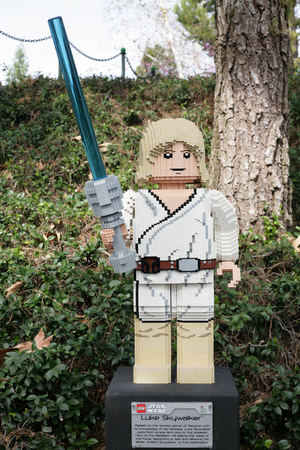 starwars: CARLSBAD, US, FEB 6: Star Wars Luke Skywalker Minifigure made with lego bricks at Legoland in Carlsbad, California on Feb 6, 2014.