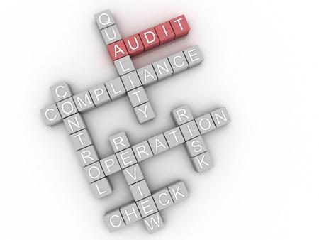 gestion empresarial: Auditor�a Imagen 3D emite palabra nube concepto de fondo Foto de archivo