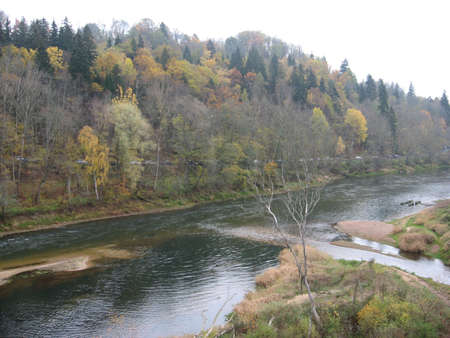 gauja: a landscape with the trees reflecting in the river Stock Photo