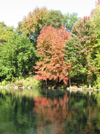 colourfull autumn in the park Stock Photo - 2103108
