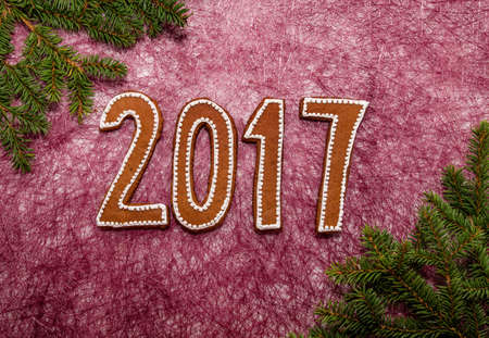 Christmas and new year background with gingerbread cookies.