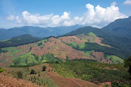 Meadows and mountains The beauty of nature at Doi Phu Kha National Park in Nan Province, Thailand