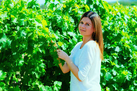winemaker: beautiful young woman, walks on a vineyard in a hot summer, sunny day