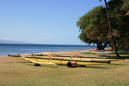 beached: Beached outrigger canoe