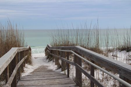 Wooden walkway over dunes with ocean view photo