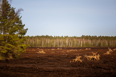 An early spring landscape of a marsh where peat is being harvested Stock Photo