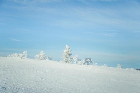 sky brunch: A beautiful landscape of a frozen plains in a snowy Norwegian winter day