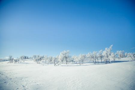Un paisaje hermoso de una llanuras congeladas en un día de invierno noruego nevoso Foto de archivo