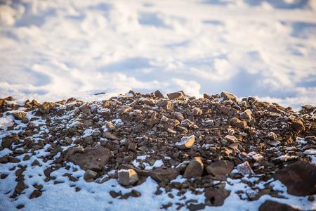sky brunch: A beautiful details of a snowy Norwegian winter day