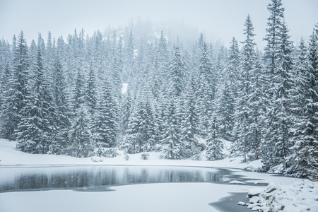 tatra: A beautiful winter landscape with a mountain lake in blizzard. Western Tatra mountains in Slovakia Stock Photo