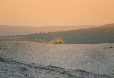 ノルウェーの真ん中に美しい砂丘。秋の中央スカンジナビア北部の砂漠。不毛の地のように見えるカラフルな風景。