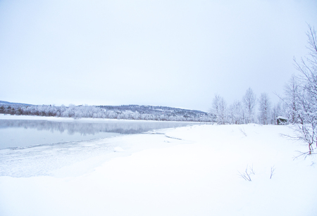Beautiful frozen river with a trees on a bank. White winter landscape of central Norway. Light scenery. Imagens