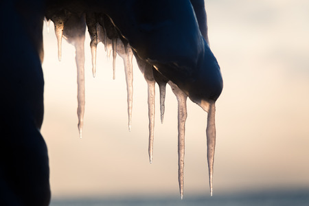 A beautiful hangign icicles of salt water on the coast of Baltic sea. Ice in the beach at winter. Frozen water formations. Stock Photo
