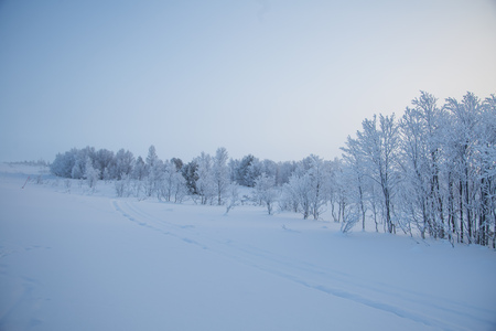 A beautiful, misty morning in the Norwegian hills in winter. White, hazy landscape. Near the small Norwegian town Roros.