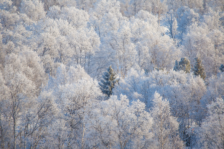 A beautiful morning sceney of a small Norwegian town Roros in winter. World heritage site. Scandinavian winter landscape.