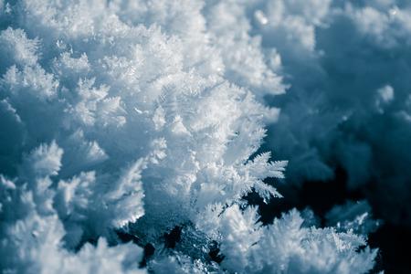 A beautiful snow closeup in a winter day. Norwegian winter scenery. Фото со стока