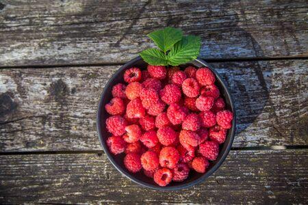 Beautiful, freshly picked garden raspberries in the summer. Summer berries, natural food, healthy dessert.