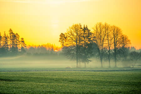 A beautiful springtime dawn landscape before the sunrise. Soft, diffused light over the rural scenery during spring. Misty landscape of Northern Europe.
