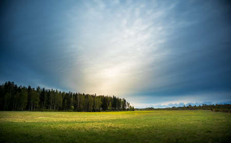 A beautiful overcast spring morning no Northern europe. Springtime landscape with trees. Soft, diffused light over the rural landscape.