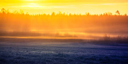 A beautiful misty springtime sunrise over the rural area in Northern Europe. Spring landscape with soft, diffused light.