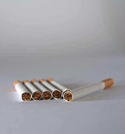 unlit: Six unlit flter cigarettes