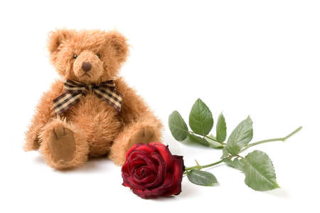 Teddy Bear and Rose