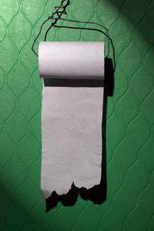 tu puedes: Baratos rollo de papel higi�nico en la pared verde. Puede escribir su mensaje sobre el mismo.