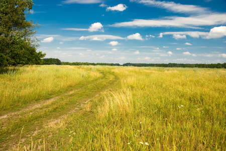 Road in a summer field, the beautiful sky with clouds above Stock Photo - 3286221
