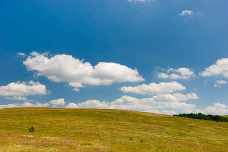 Meadow with beautiful cloudy sky above Stock Photo - 3832106