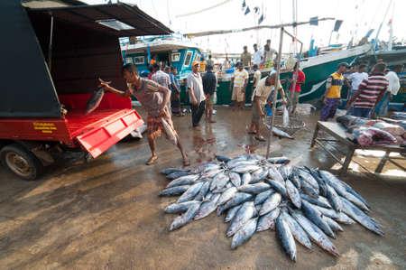 MIRISSA, SRI LANKA - APRIL 10: Fishermen returned to their work in Mirissa, Sri Lanka on April 10, 2012. In 2008 USAID finalize a $12.7 million repair of fishing harbor affected by tsunami in Mirissa. Stock Photo - 13714907