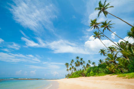 Untouched tropical beach in Sri Lanka Stock Photo - 14155663