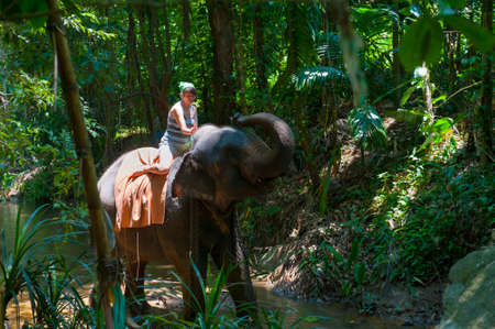 thai elephant: Woman riding on an elephant in the jungle Stock Photo