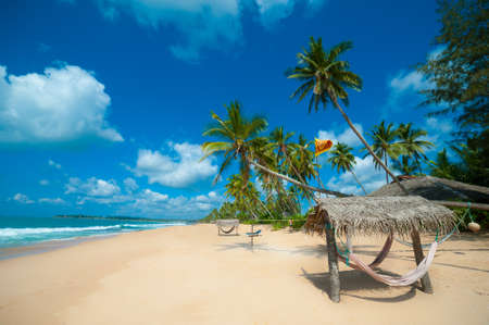 Tropical beach in Sri Lanka photo