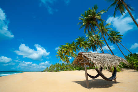 Tropical beach in Sri Lanka Stock Photo - 14813462