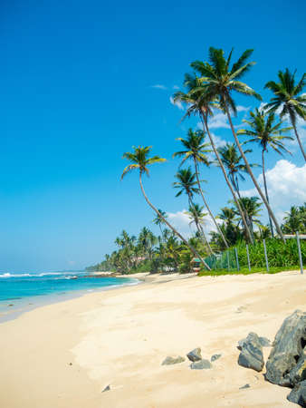 Untouched tropical beach in Sri Lanka photo