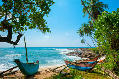 seascape: Untouched tropical beach with palms and fishing boats in Sri-Lanka Stock Photo