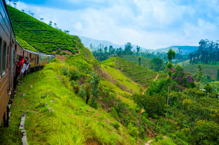 Travel by train through scenic mountain landscape in Nuwarelia, Sri Lanka
