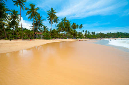Tropical beach in Mirissa bay, Sri Lanka photo