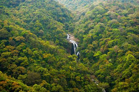 srilanka: Waterfall near Nuwara Eliya in Sri-Lanka