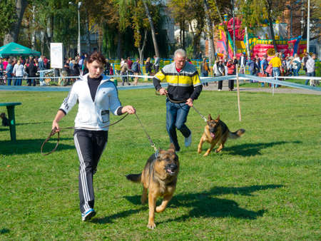 twice: SUMY, UKRAINE - OCTOBER 7: Unidentified participants compete in dog show on October 10, 2012 in Sumy, Ukraine. Dog shows are held in Sumy twice a year and are very popular among the locals.