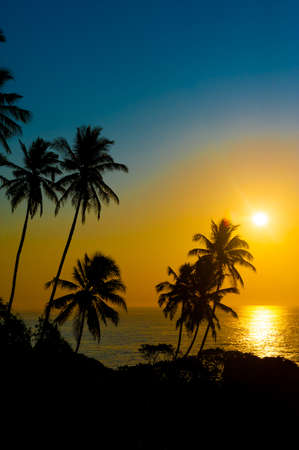 Beautiful tropical sunset on a beach in Sri-Lanka photo
